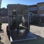 ifor-williams-hb511-2-paards-trailer-aanhangwagens-zuid-holland-achterkant-open-2-0